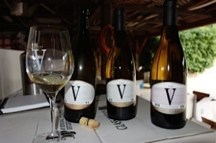 3 Whites from Vino V photo by Pineapple Helen