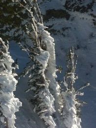 from Chair 14 at Mammoth