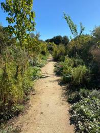 one of the inviting paths at DaVero